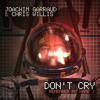 Joachim Garraud & Chris Willis - Don't Cry (Remember My Name)
