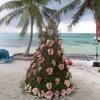Tropical Christmas Carol