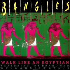 Bangles - Walk Like An Egyptian (White Label Remix)