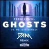Feenixpawl - Ghosts Feat. Melissa Ramsay (DAM Remix)