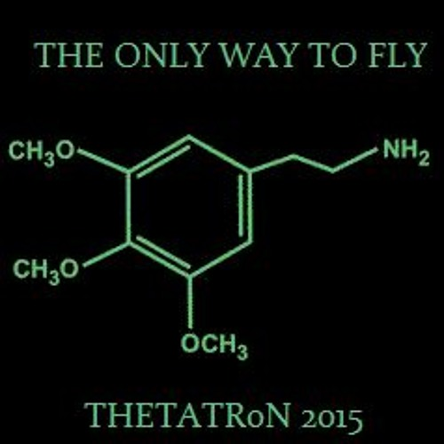 The Only Way To Fly