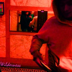Wilderness (prod. TomChief)