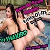 Base de Funk Putaria Estilo DJ R7 (DJ SHAKIRO)