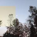 Drip-133 ft. Sosi – MyLeaf