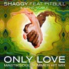 Shaggy - Only Love Ft. Pitbull, Gene Noble - (Mastiksoul Big Room Mix)
