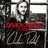David Guetta - Bad (Charlie Dietel Remix)