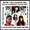 Download IRENE CARA - WHAT A FEELING - DJ TOP CAT OLD SCHOOL HOUSE MASH UP MIX Mp3