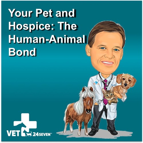 Podcast 6 – Your Pet and Hospice: The Human-Animal Bond