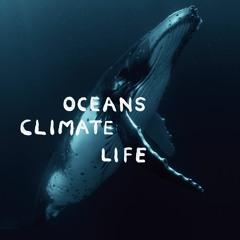 Stop Plastic Pollution – Florian Schneider(Kraftwerk co-founder), Dan Lacksman (Telex)