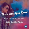 Nico & Vinz - That's How You Know ft Kid Ink, Bebe Rexha (Collin Brooklyn Remix)