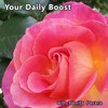 DAILY BOOST #46 - Recognise Your Limits