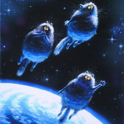 The ВЙО - Три Замріяні Коти