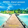 MNEK, Zara Larsson - Never Forget You (iMIUM Remix Ft. Nell)