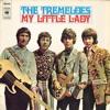 My Little Lady (The Tremeloes) - Antonio Viñuales & La Fundación