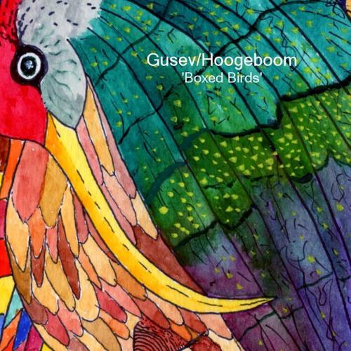 Boxed Birds I (Gusev/Hoogeboom - please read description)