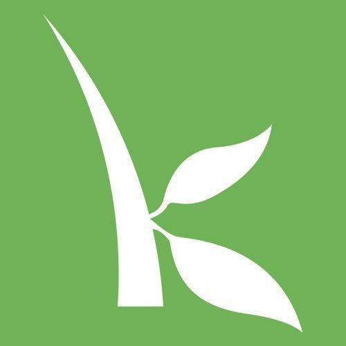 GA Kiva
