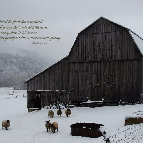 The Christmas Story through Song: O Come O Come Emmanuel