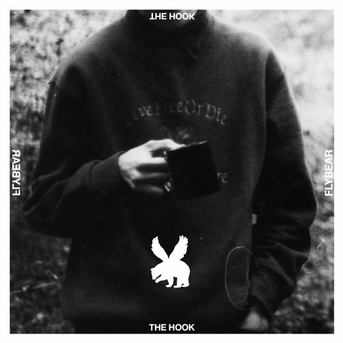 Flybear - The Hook