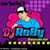DJ Roby Sandria - Can Remember To Forget You (Sh