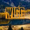 Wigg Jump Album Cover