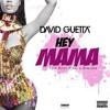 David Guetta & Nicky Minaj - Hey Mama ( Elvix Garcia ) Moombah 2015