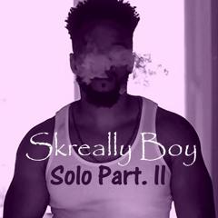 Skreally Boy - Solo Part. II