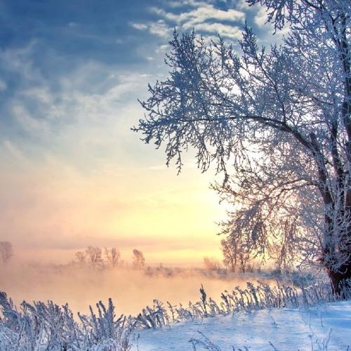 """Antonio Vivaldi """"Largo"""" - Die vier Jahreszeiten"""