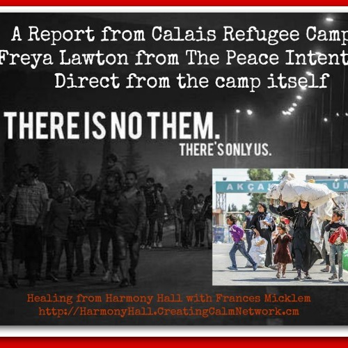 Podcast - Frances Micklem - Report from Calais Refugee Camp by Freya Lawton