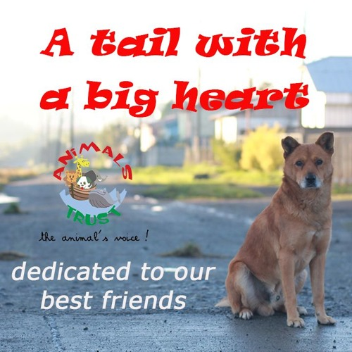 A tail with a big Heart