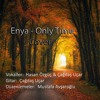Enya - Only Time (Cover)