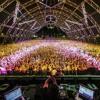 SHANKAR YADAV MIZALGUDA DJ SONG MIX BY DJ SUNNY