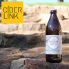 Interview with Sam from New England Cider Co.