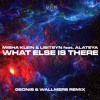 Misha Klein & Lisitsyn feat. Alateya - What Else Is There(Geonis & Wallmers Remix)[free download]