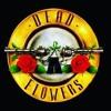 Dead Flowers - Dust N' Bones (Guns N' Roses Tribute)
