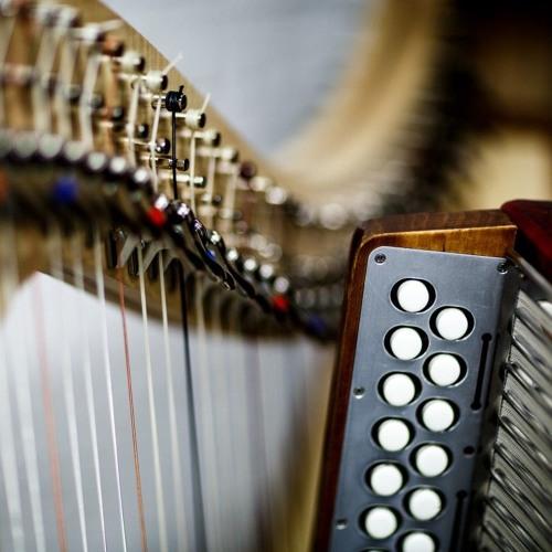 Accordion & Harp (demo)