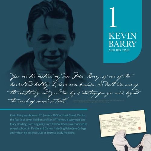 Diarmaid Ferriter - Kevin Barry and his legacy