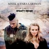 Zara Larsson And Mnek Never Forget You Enmity Remix Mp3