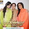 Beti Bhoola Na Ye Dil- Sajjad Ali - OST Meri