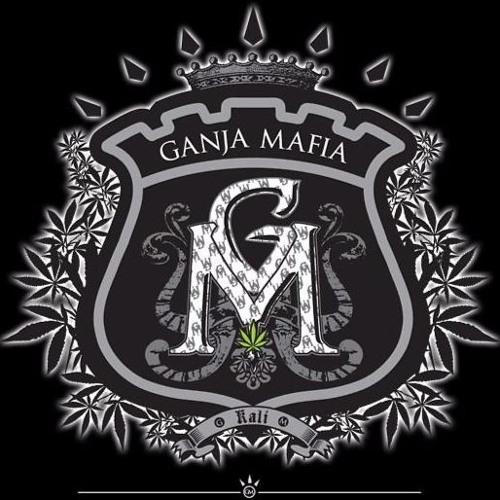 Thumbnail Ganja Mafia Band The Rolla