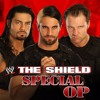 WWE The Shield Theme Song - Special Op by Jim Johnston (Arena Effect)