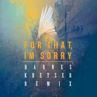 BATTS - For That I'm Sorry (Harnes Kretzer Remix)