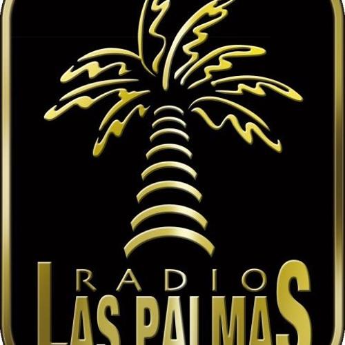 Entrevista Narain Radio Las Palmas