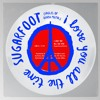 Sugarfoot - I Love You All The Time (Eagles Of Death Metal)