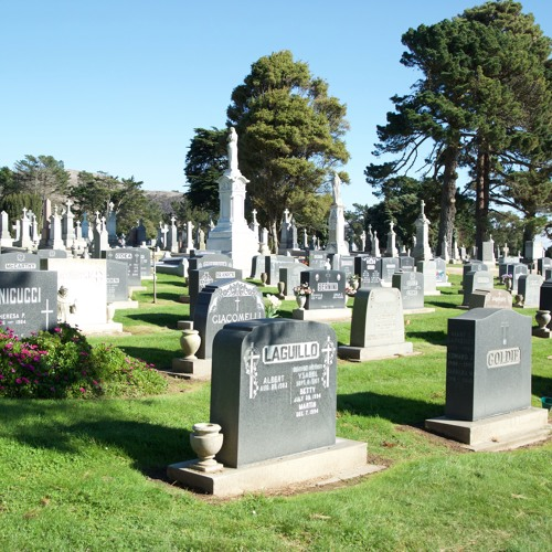 Bay Curious: Why are All of San Francisco's Dead People Buried in Colma?