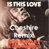 Bob Marley - Is This Love (Cheshire Remix)