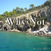 Why Not Vol.3 Deep Vocal & Nu Disco Mix 2015