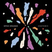 Opus Orange - Radio Silence
