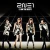 2NE1  - I Am The Best 2015 - FortuneVo vest 1