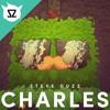 Steve Duzz - Charles (Minecraft EDM)