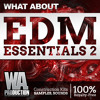 EDM Essentials 2 [12 Construction Kits + 4GB of Samples, Loops & Presets]